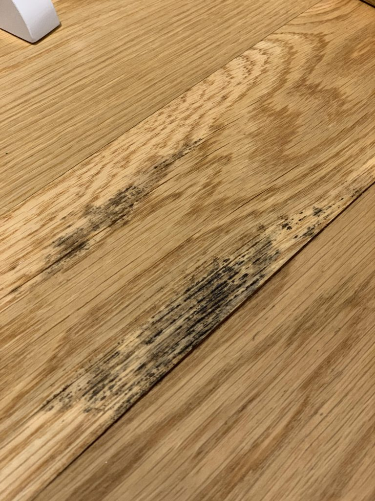 kaip panaikinti pelesi nuo medienos